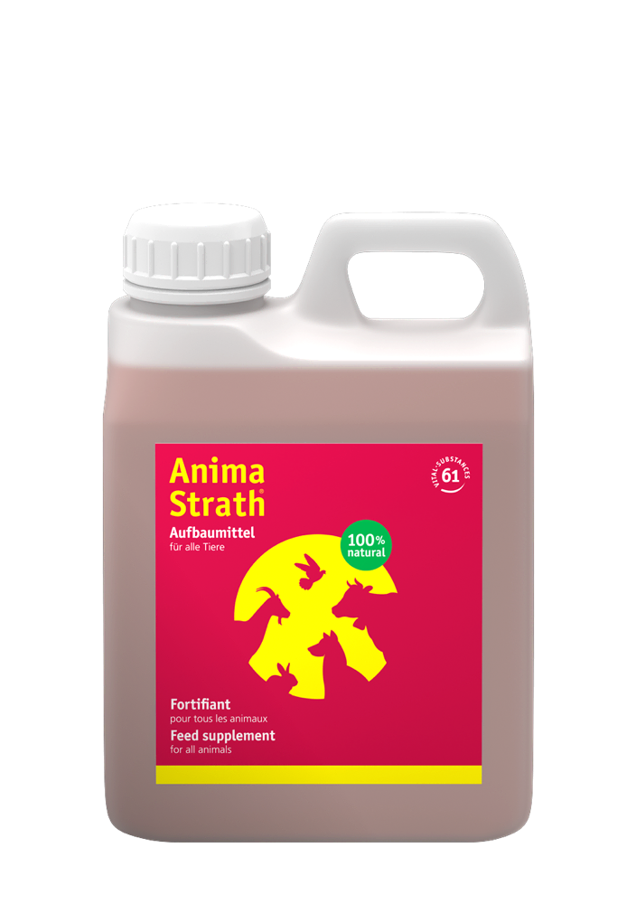 Anima-Strath liquid