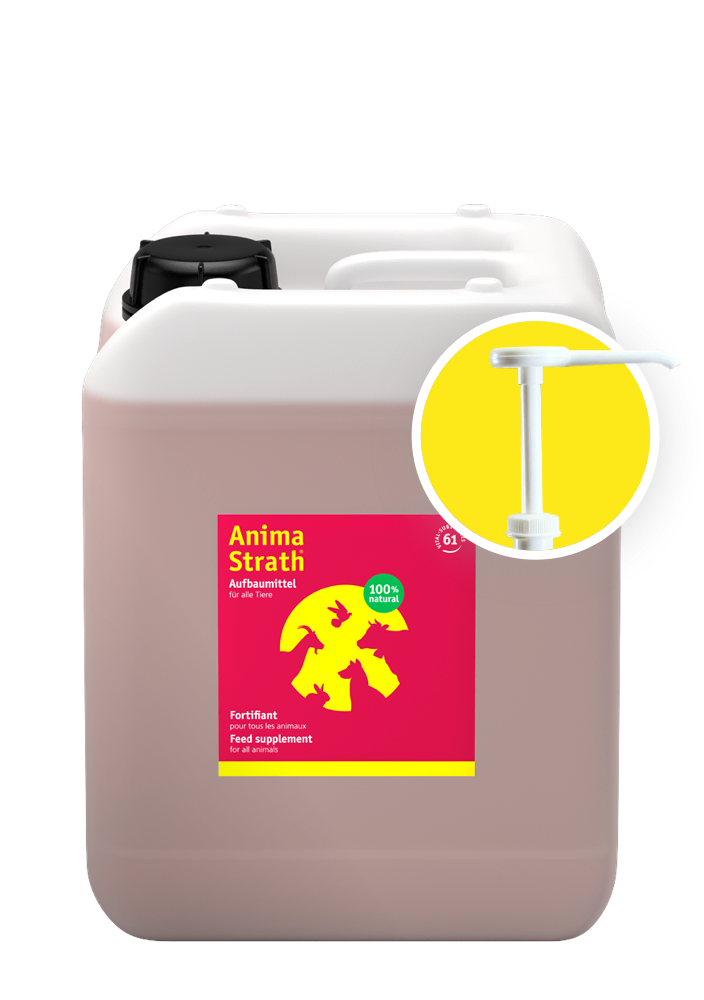 Anima-Strath Container 5l including dosing pump
